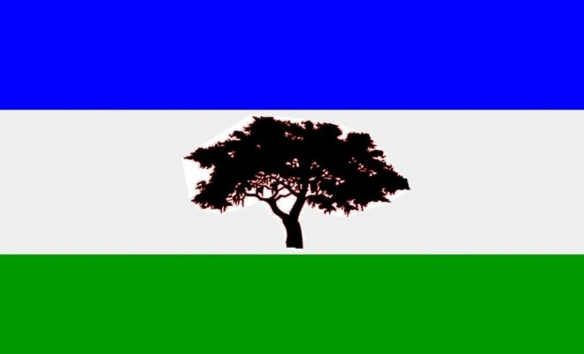 Barrio Sur ya tiene su propia bandera.