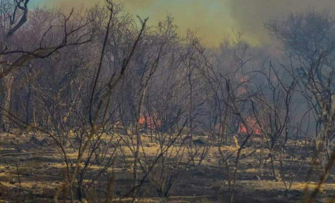 Incendios controlados en las sierras cordobesas