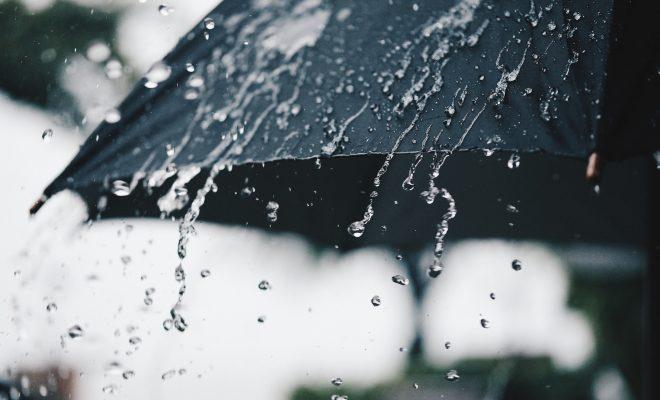 La lluvia caída este año ya fue un 135% más que en enero pasado