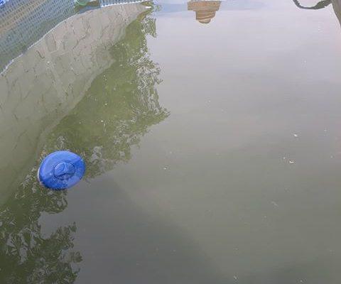 Algunos barrios todavía no cuentas con agua corriente otros perciben en el agua un color marrón turbio, que imposibilita su consumo.