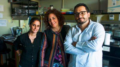 Científicos del CONICET, entre ellos cordobeses, identifican droga que podría usarse en cáncer de mama y ovario