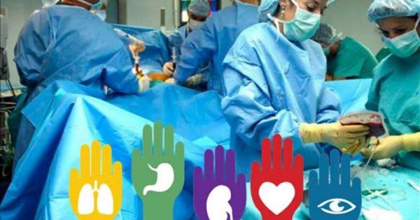 Argentina alcanzó su tasa más alta de donación de órganos
