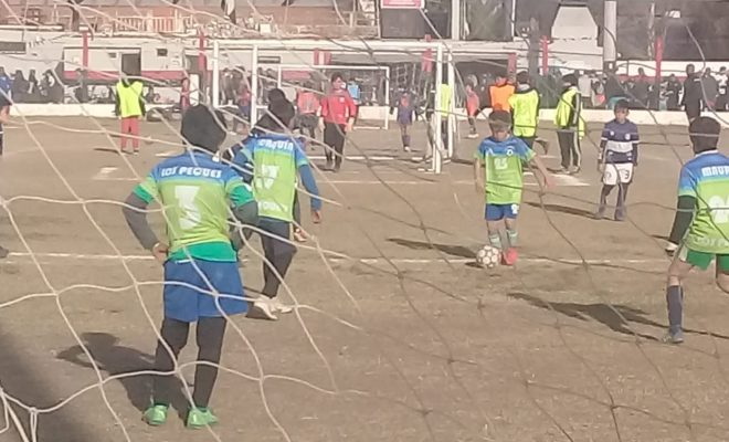 Fútbol infantil: torneo solidario en Anisacate